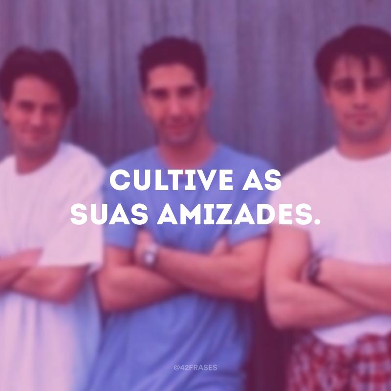 Cultive as suas amizades.