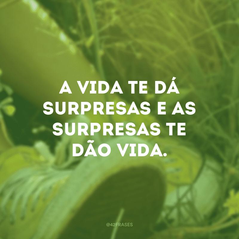 A vida te dá surpresas e as surpresas te dão vida.