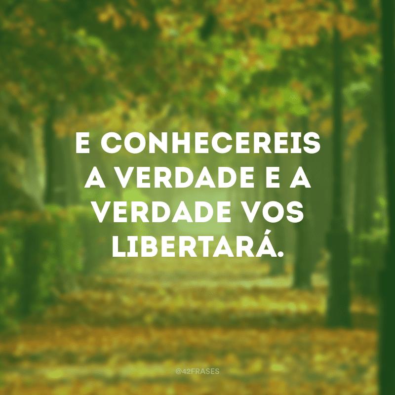 E conhecereis a verdade e a verdade vos libertará.
