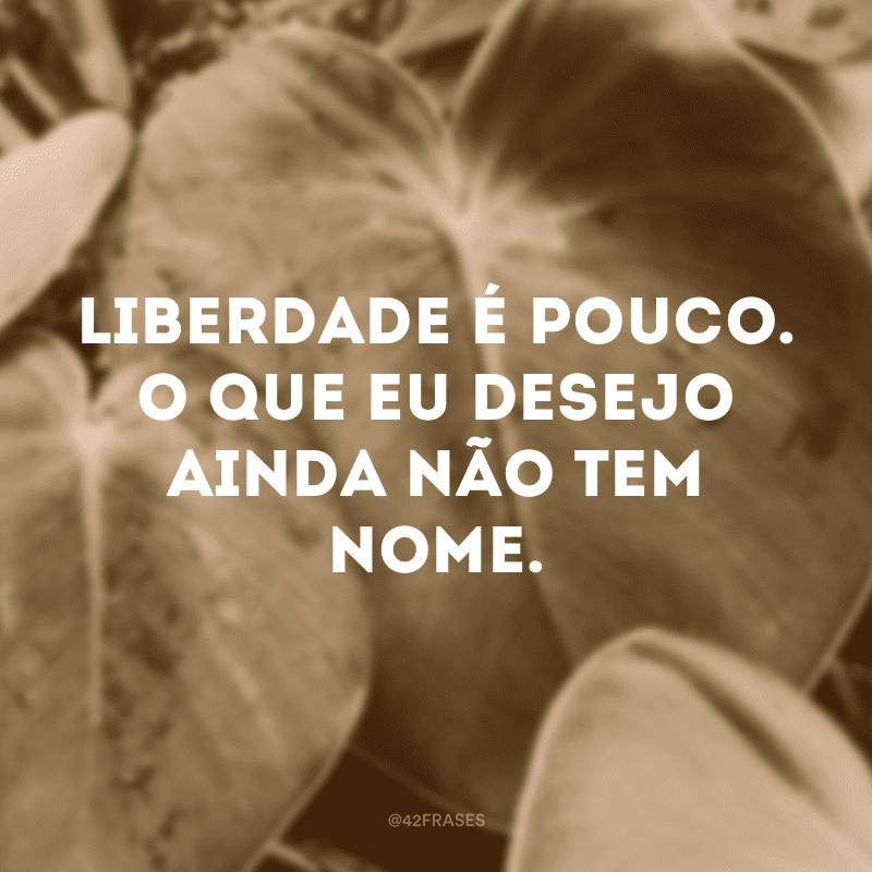 Liberdade é pouco. O que eu desejo ainda não tem nome.
