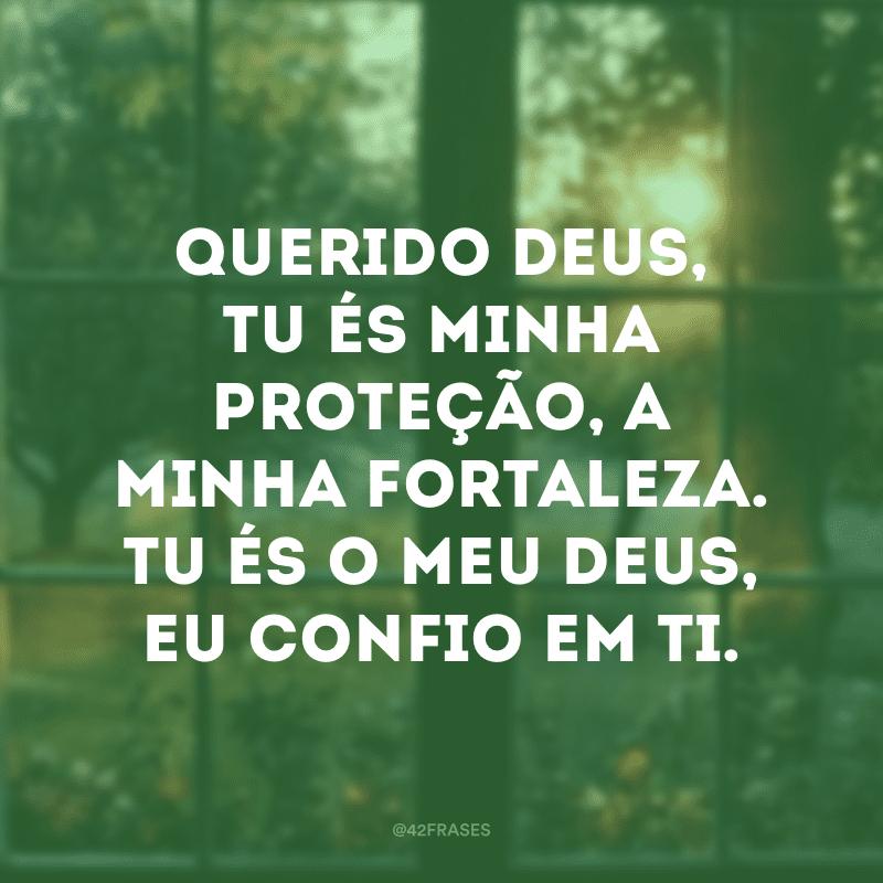 Querido Deus, Tu és minha proteção, a minha fortaleza. Tu és o meu Deus, eu confio em Ti.
