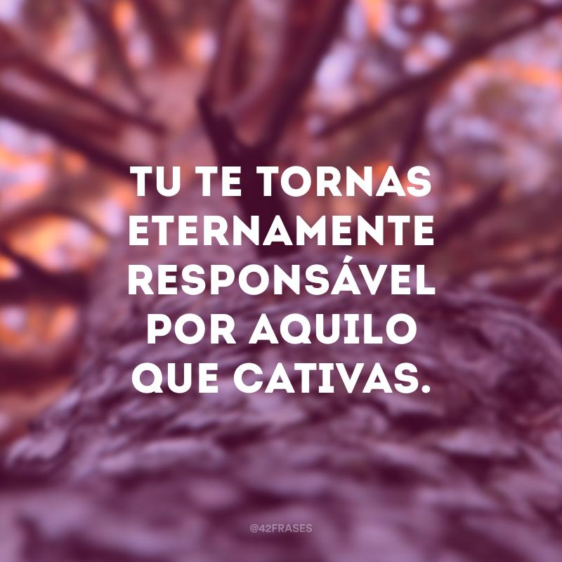 Tu te tornas eternamente responsável por aquilo que cativas.