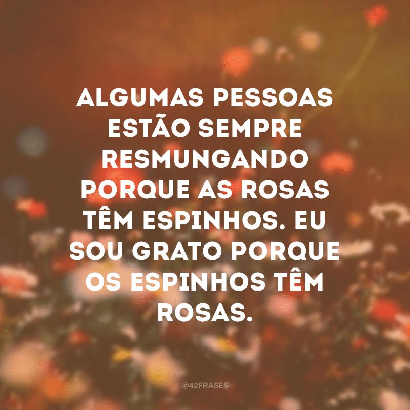 Algumas pessoas estão sempre resmungando porque as rosas têm espinhos. Eu sou grato porque os espinhos têm rosas.