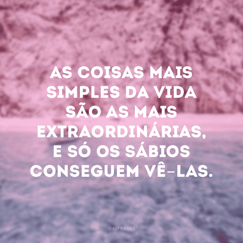 As coisas mais simples da vida são as mais extraordinárias, e só os sábios conseguem vê-las.