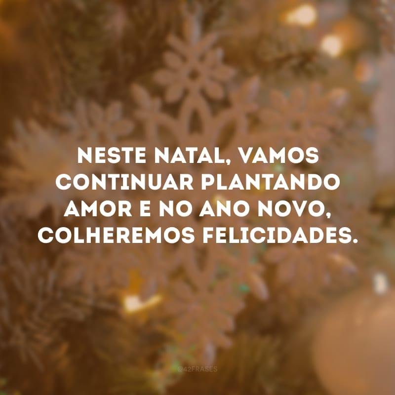 Neste Natal, vamos continuar plantando amor e no Ano Novo, colheremos felicidades.