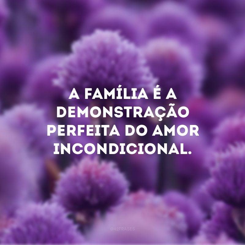 A família é a demonstração perfeita do amor incondicional.