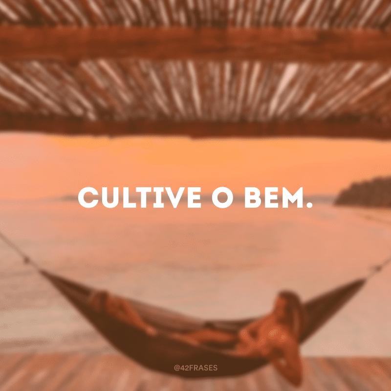 Cultive o bem.
