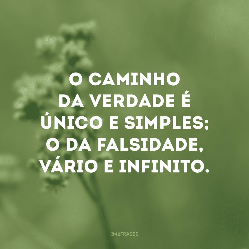 O caminho da verdade é único e simples; o da falsidade, vário e infinito.