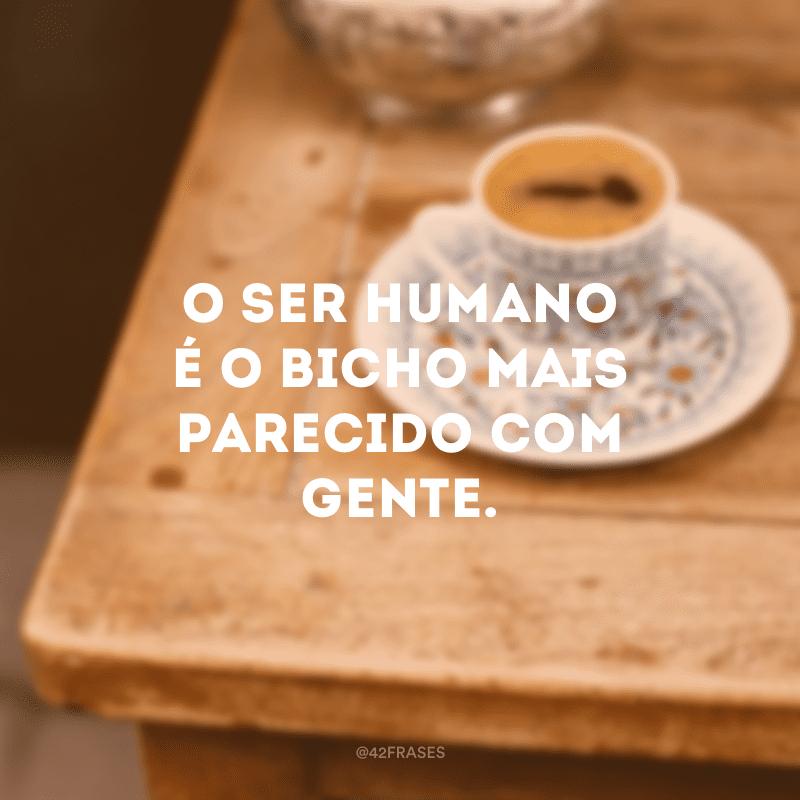 O ser humano é o bicho mais parecido com gente.