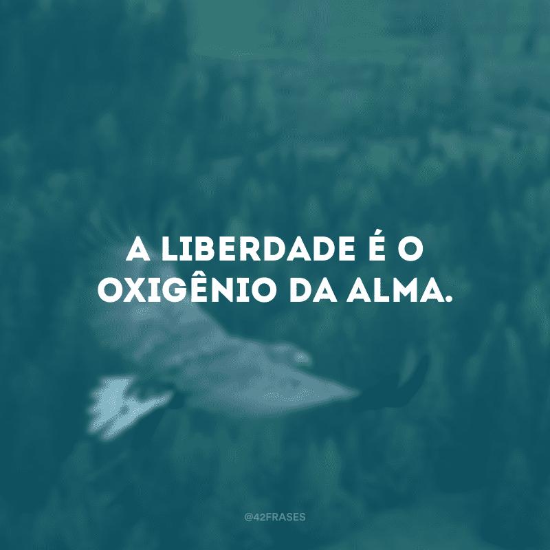 A liberdade é o oxigênio da alma.