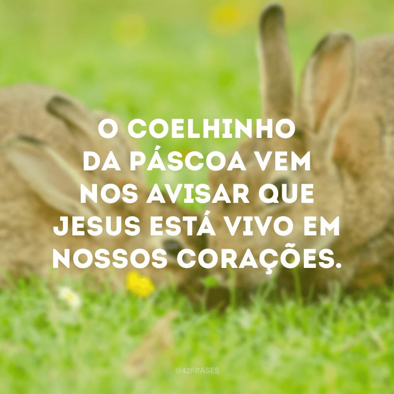 O coelhinho da Páscoa vem nos avisar que Jesus está vivo em nossos corações.