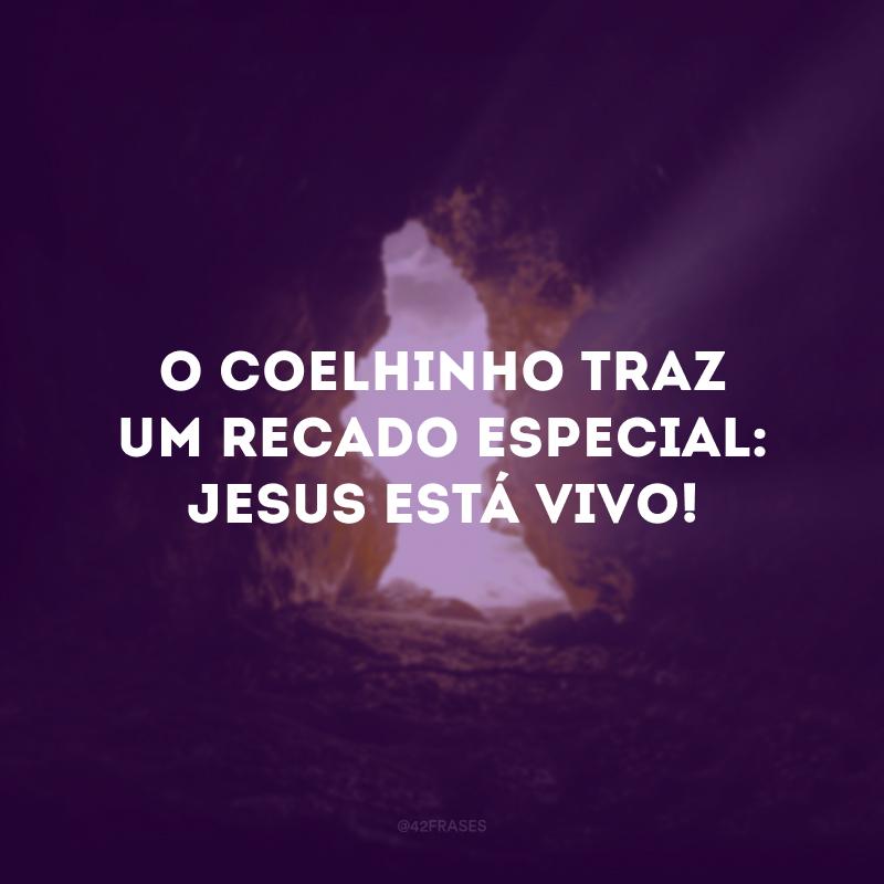 O coelhinho traz um recado especial: Jesus está vivo!