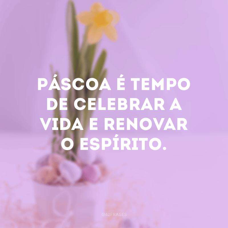 Páscoa é tempo de celebrar a vida e renovar o espírito.