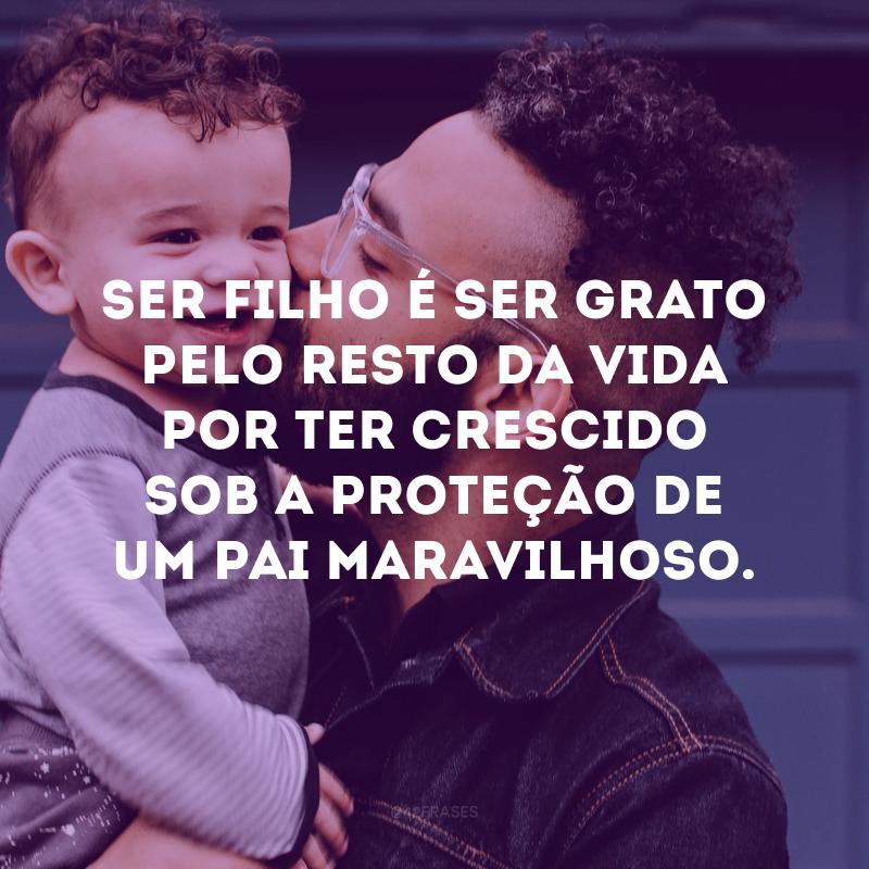 Ser filho é ser grato pelo resto da vida por ter crescido sob a proteção de um pai maravilhoso.