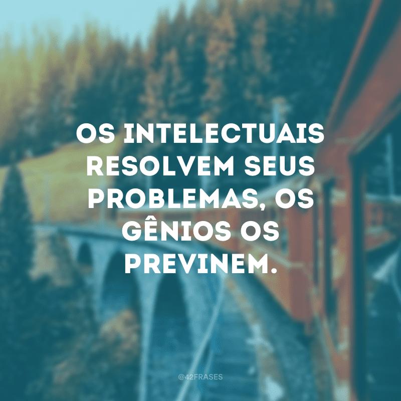 Os intelectuais resolvem seus problemas, os gênios os previnem.