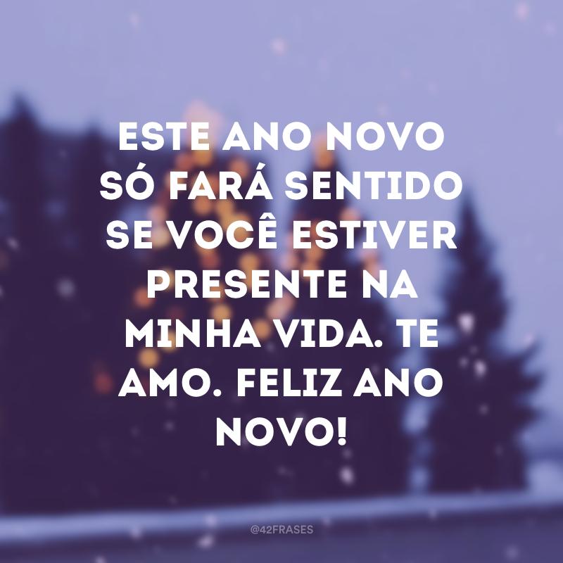 Este Ano Novo só fará sentido se você estiver presente na minha vida. Te amo. Feliz Ano Novo!