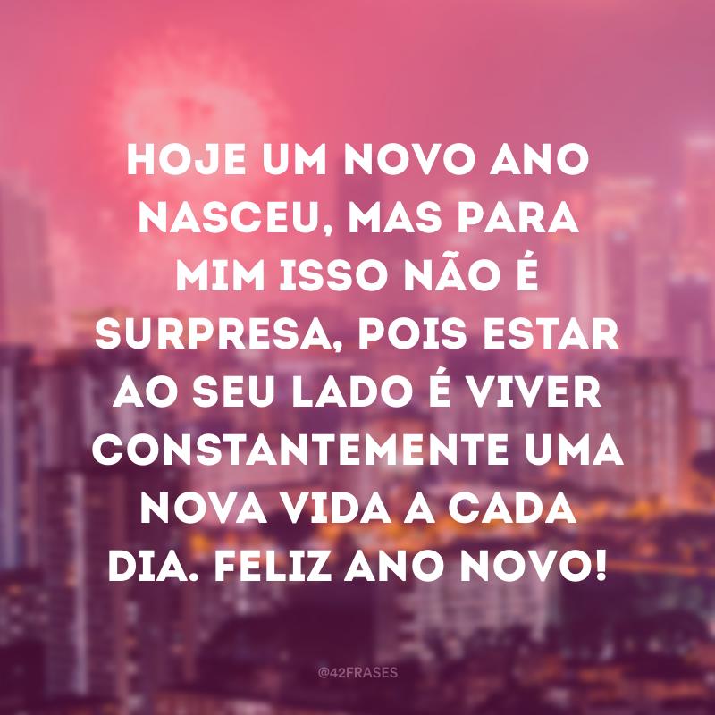 Hoje um novo ano nasceu, mas para mim isso não é surpresa, pois estar ao seu lado é viver constantemente uma nova vida a cada dia. Feliz Ano Novo!