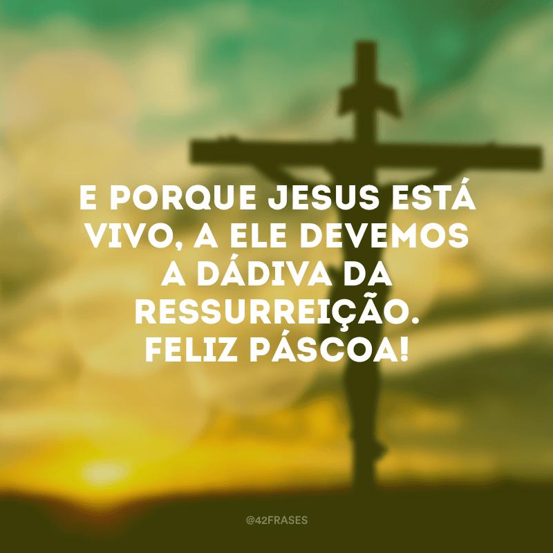 E porque Jesus está vivo, a Ele devemos a dádiva da ressurreição. Feliz Páscoa!