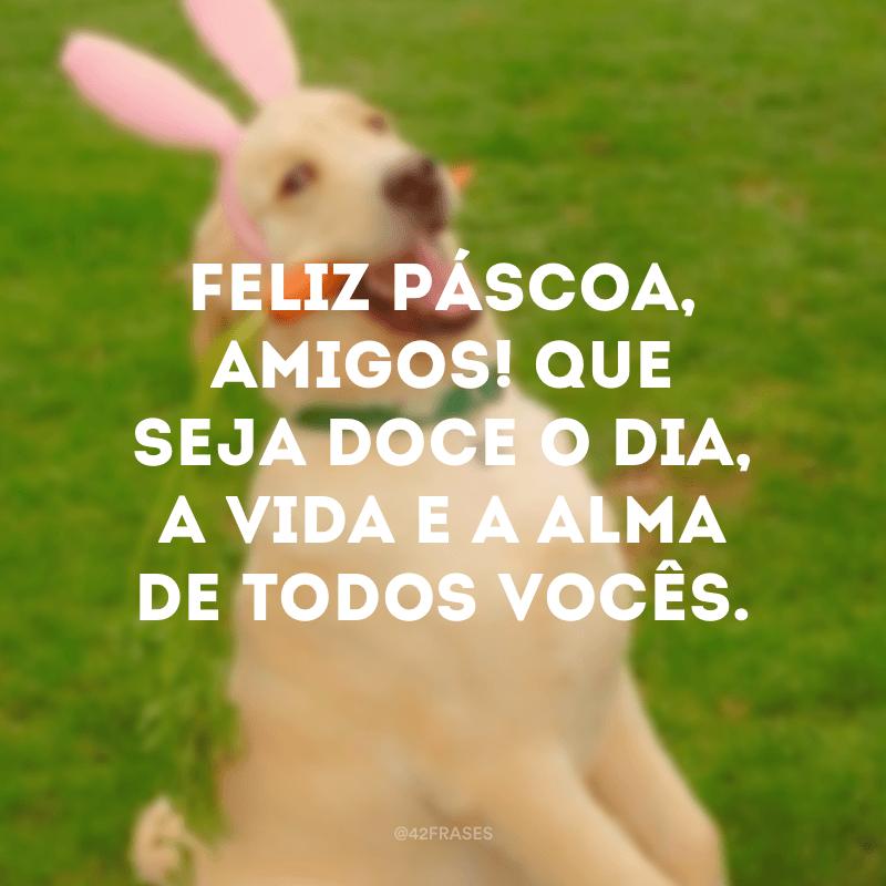 Feliz Páscoa, amigos! Que seja doce o dia, a vida e a alma de todos vocês.