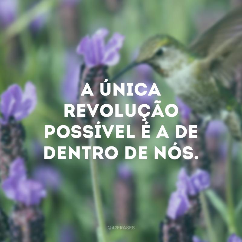 A única revolução possível é a de dentro de nós.