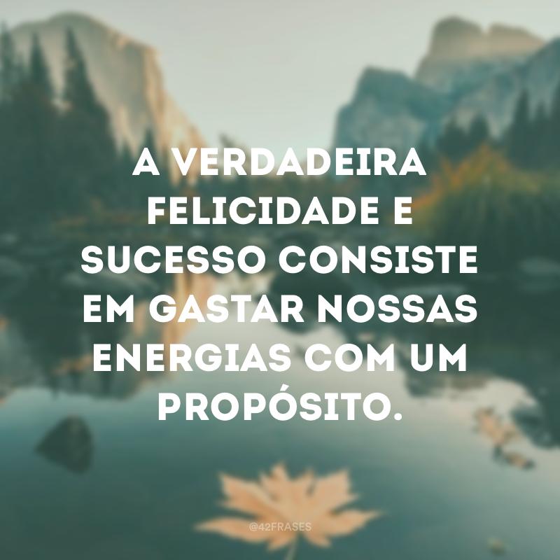 A verdadeira felicidade e sucesso consiste em gastar nossas energias com um propósito.