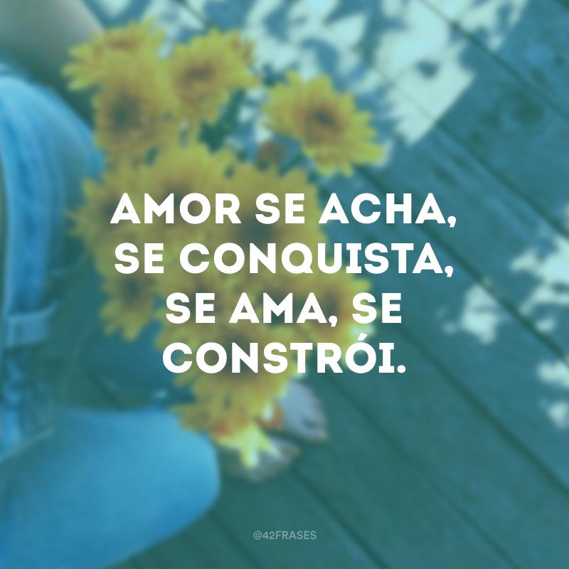 Amor se acha, se conquista, se ama, se constrói.