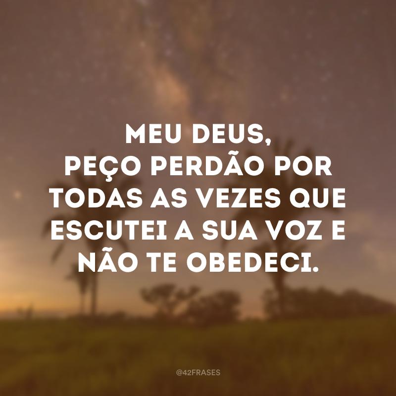 Meu Deus, peço perdão por todas as vezes que escutei a sua voz e não te obedeci.