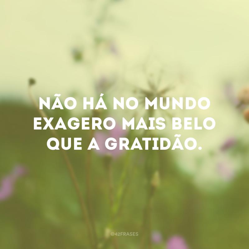 Não há no mundo exagero mais belo que a gratidão.