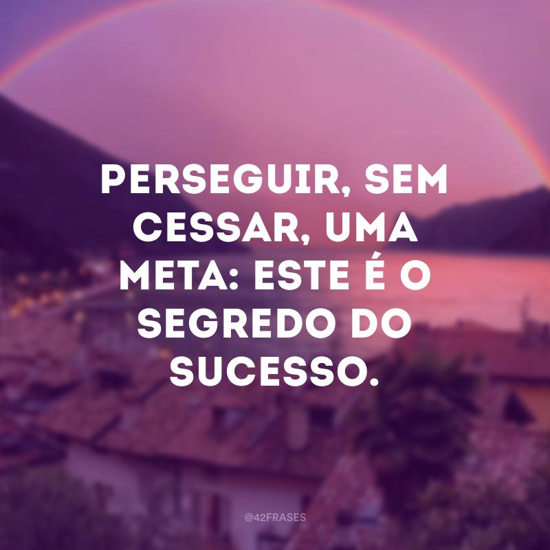 Perseguir, sem cessar, uma meta: este é o segredo do sucesso.