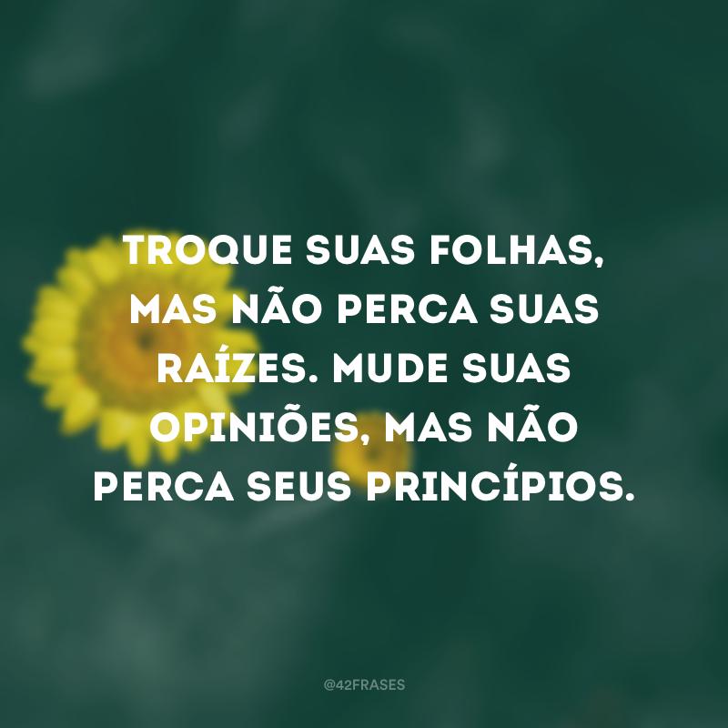 Troque suas folhas, mas não perca suas raízes. Mude suas opiniões, mas não perca seus princípios.