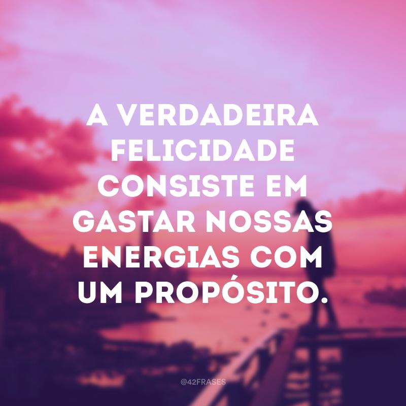 A verdadeira felicidade consiste em gastar nossas energias com um propósito.