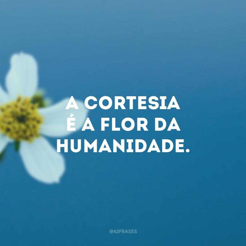 A cortesia é a flor da humanidade.