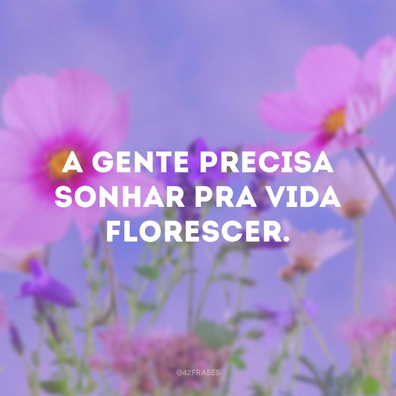 A gente precisa sonhar pra vida florescer.