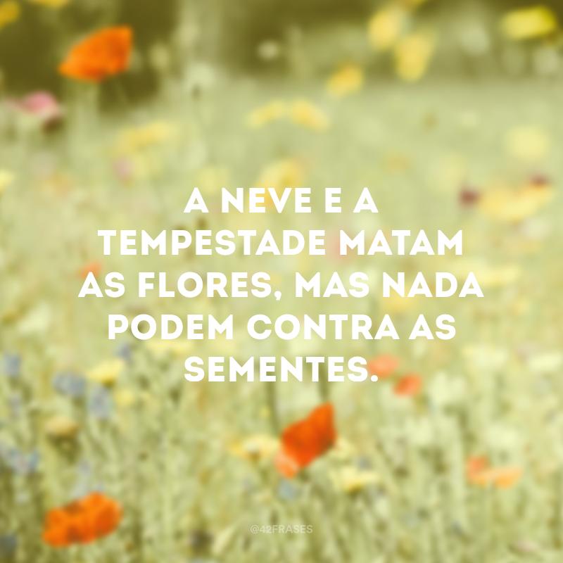 A neve e a tempestade matam as flores, mas nada podem contra as sementes.