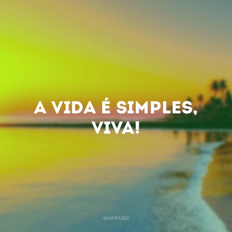 49 Frases De Simplicidade Para Valorizar As Pequenas Coisas