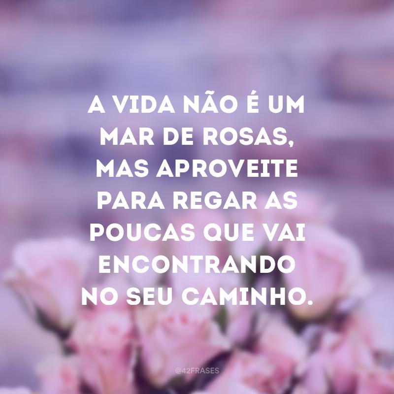 A vida não é um mar de rosas, mas aproveite para regar as poucas que vai encontrando no seu caminho.