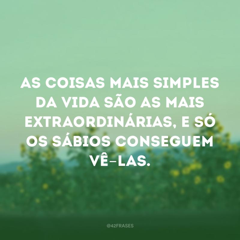 49 Frases De Simplicidade Para Valorizar As Pequenas Coisas Do Seu Dia