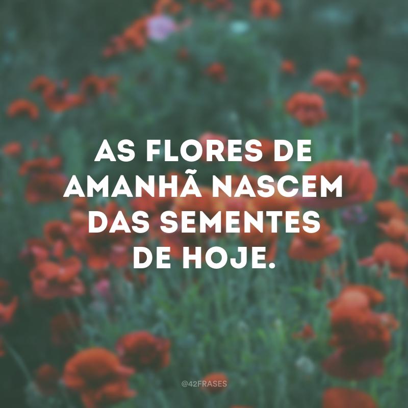 As flores de amanhã nascem das sementes de hoje.