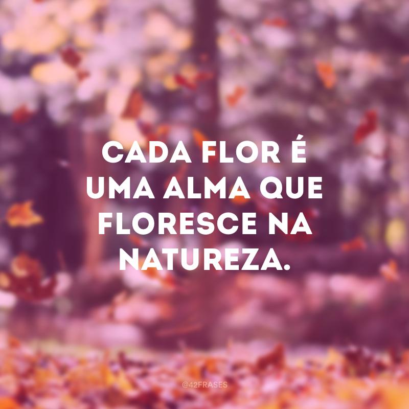 Cada flor é uma alma que floresce na natureza.