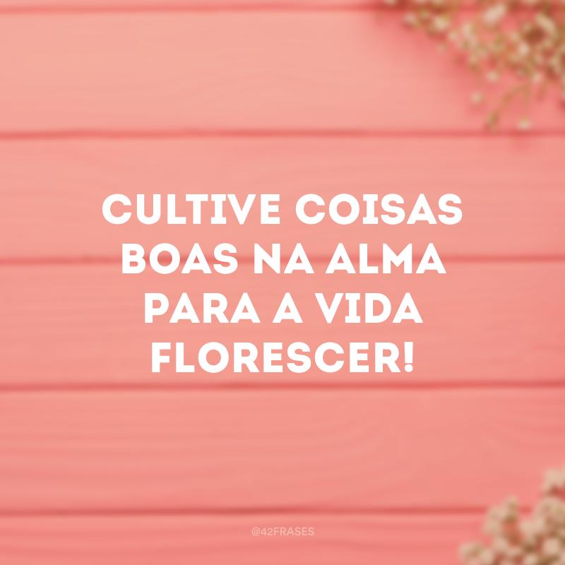 Cultive coisas boas na alma para a vida florescer!