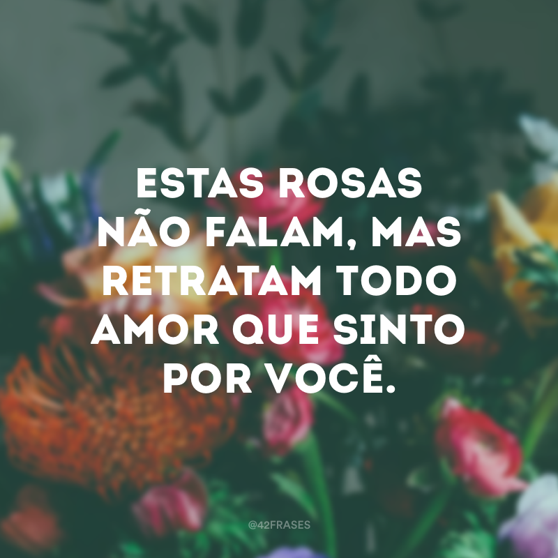 Estas rosas não falam, mas retratam todo amor que sinto por você.