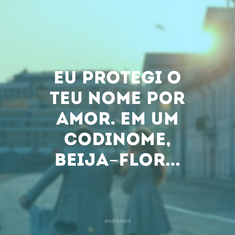 Eu protegi o teu nome por amor. Em um codinome, Beija-flor...