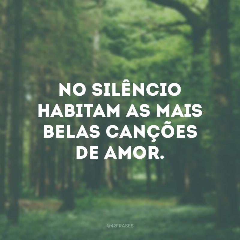 No silêncio habitam as mais belas canções de amor.