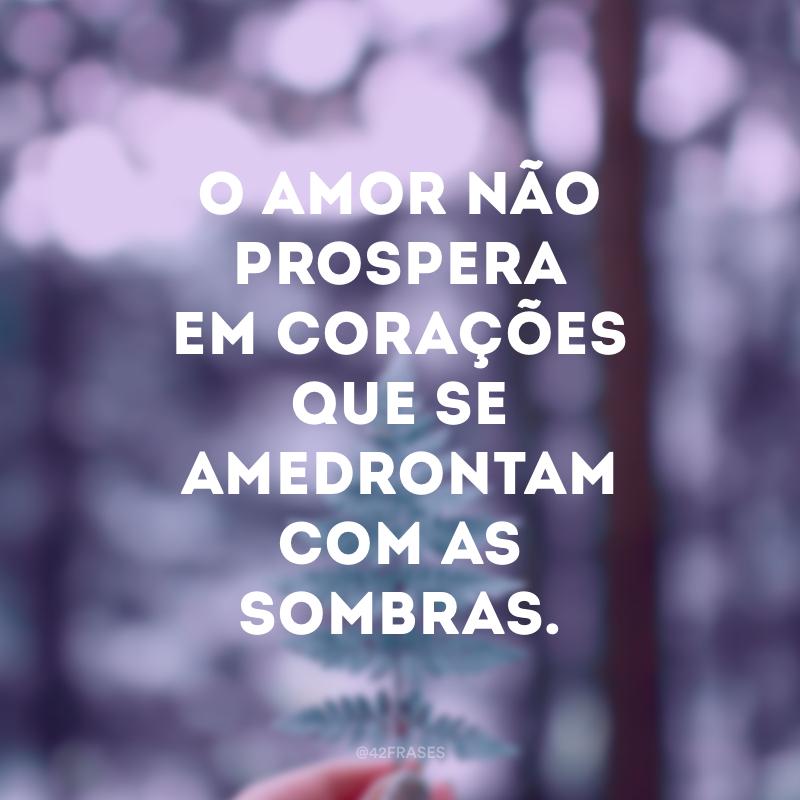 O amor não prospera em corações que se amedrontam com as sombras.