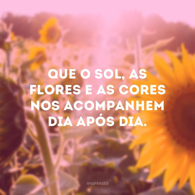 Que o sol, as flores e as cores nos acompanhem dia após dia.