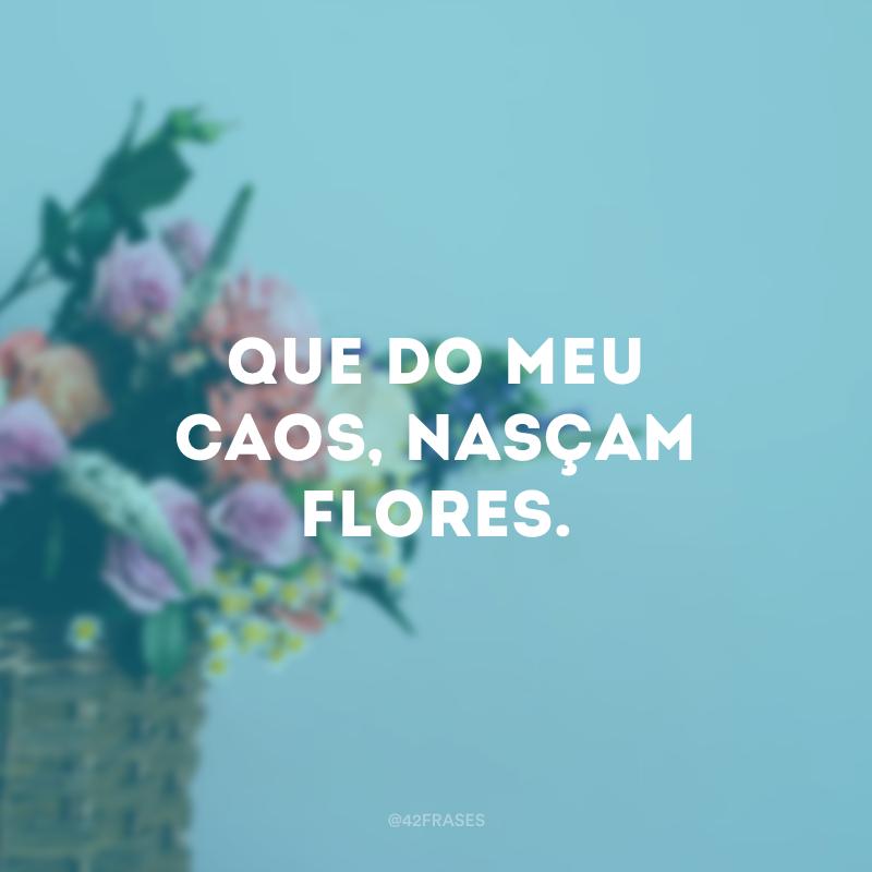 Que do meu caos, nasçam flores.