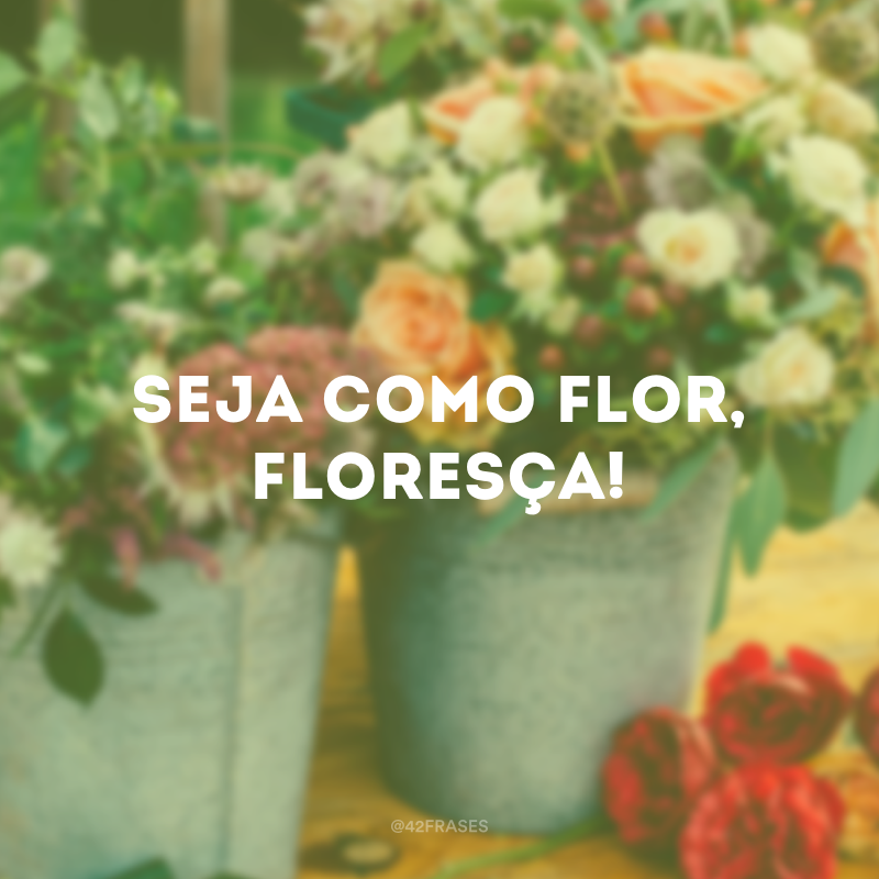 Seja como flor, floresça!