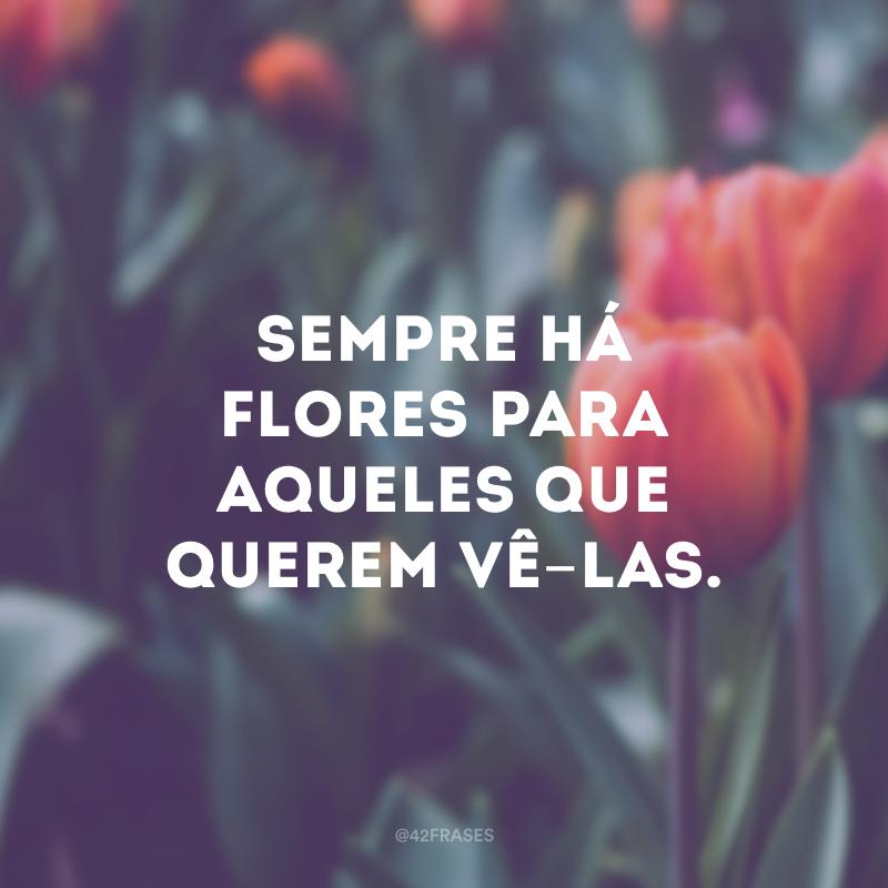 Sempre há flores para aqueles que querem vê-las.