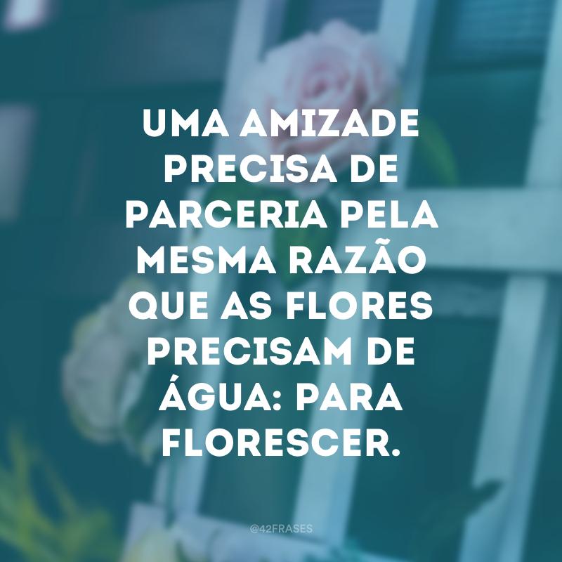 Uma amizade precisa de parceria pela mesma razão que as flores precisam de água: para florescer.