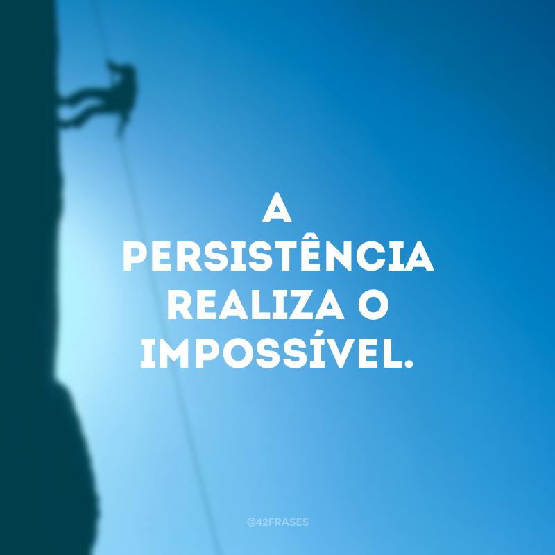 A persistência realiza o impossível.